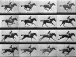 Horse in motion - (1) Eadweard Muybridge