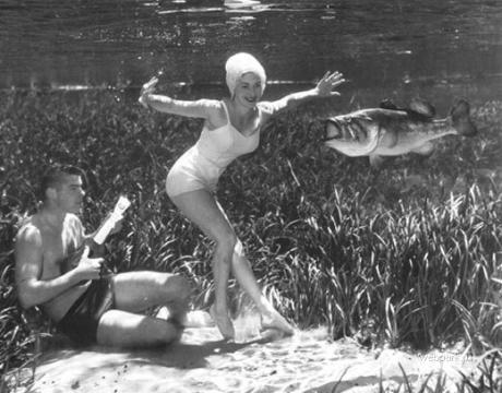 Bruce Mozerton - Underwater photography - 3