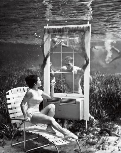 Bruce Mozerton - Underwater photography - 5