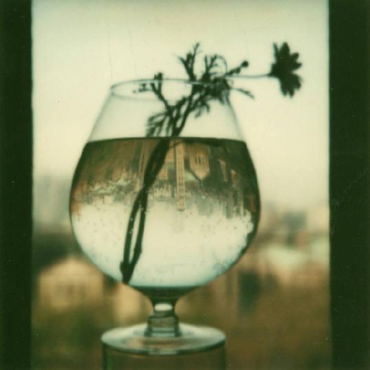 Andre Kertesz - Polaroid - 15