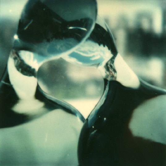 Andre Kertesz - Polaroid - 16