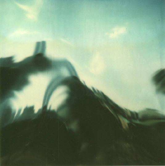 Andre Kertesz - Polaroid - 18