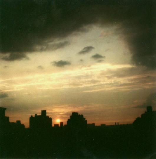 Andre Kertesz - Polaroid - 21