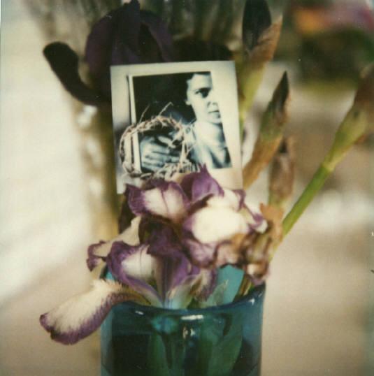 Andre Kertesz - Polaroid - 6