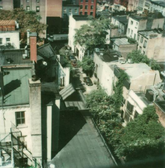 Andre Kertesz - Polaroid - 9