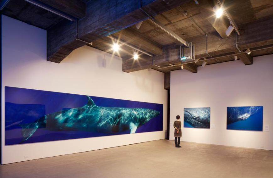 Bryant Austin - Beautiful Whale - 7