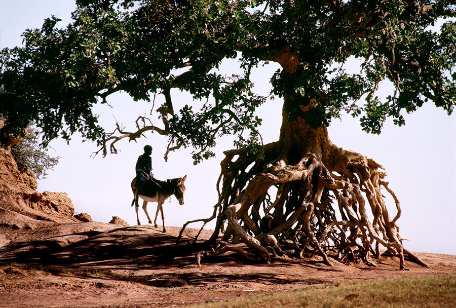 Steve McCurry - On the road - 15