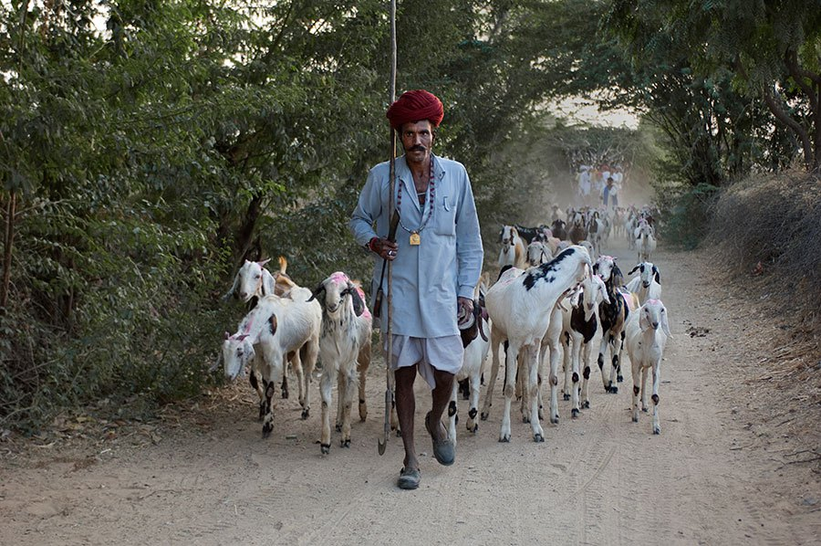 Steve McCurry - On the road - 5