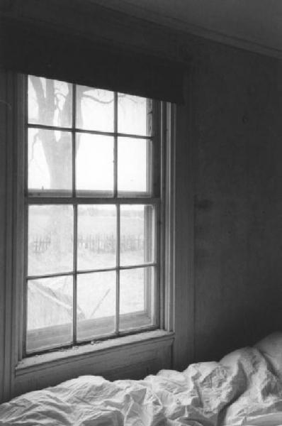 Cama de Toby  Rhode Island // Toby's Bed  Rhode Island (by