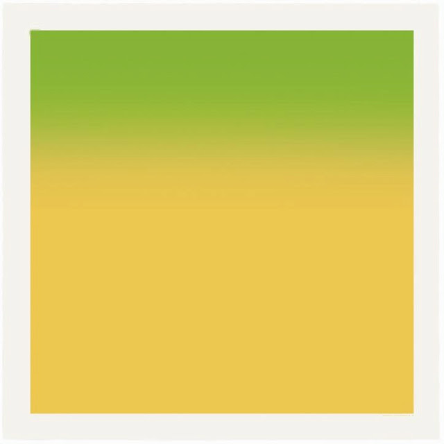 hiroshi-sugimoto-colors-of-shadow-green-yellow
