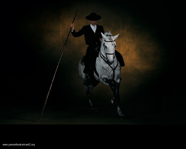 yann-arthus-bertrand-farm-animal-portraits-white-spanish-horse