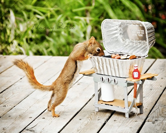 Squirrels-Photoshoot-11