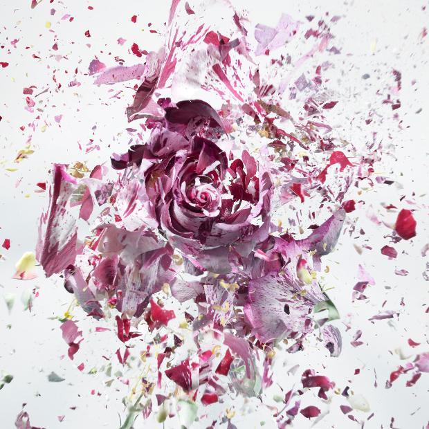 explodingflowers1