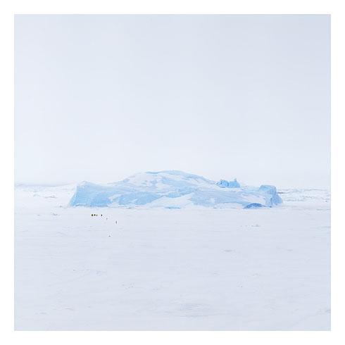 61_blue ice 02, snow hill island, antarctica