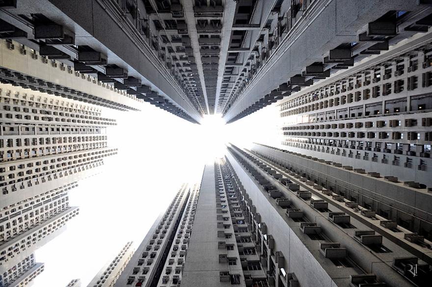 vertical-horizon-11