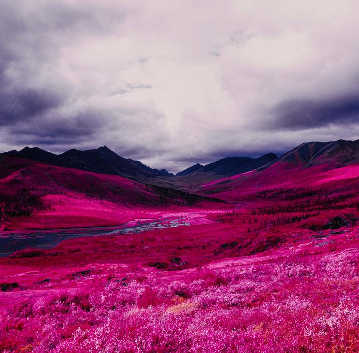 daniel-zvereff-northern-yukon