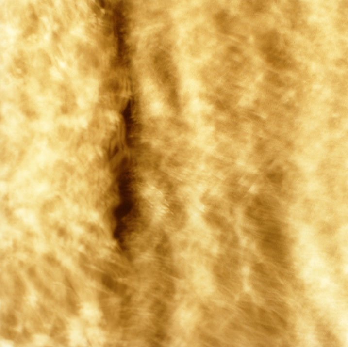 lydia-goldblatt-Air_s-Filigree_6945