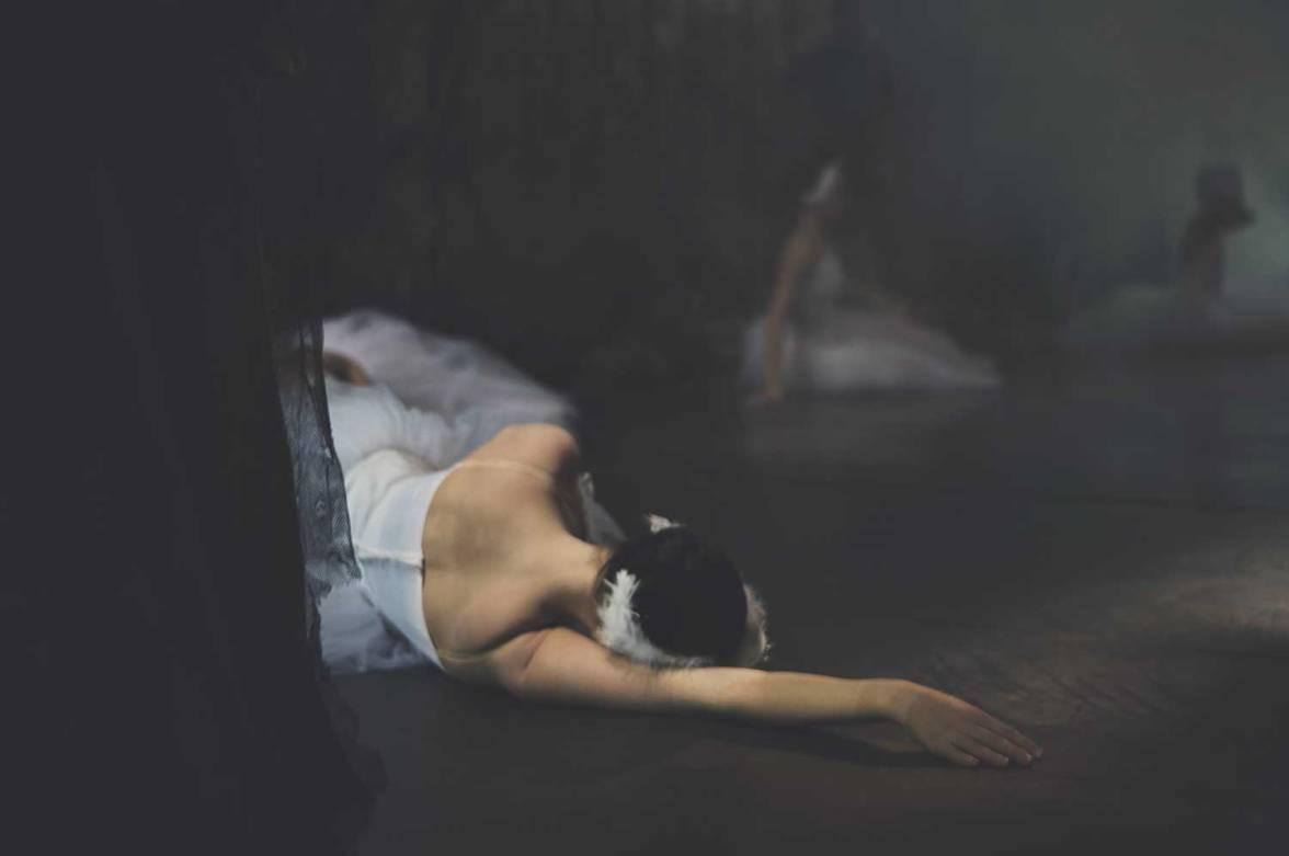 lar-swan-07