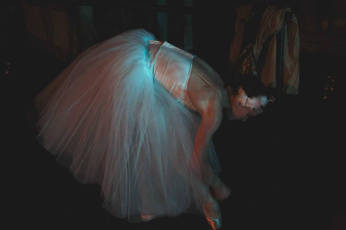 lar-swan-09