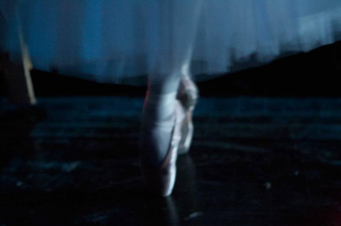 lar-swan-11