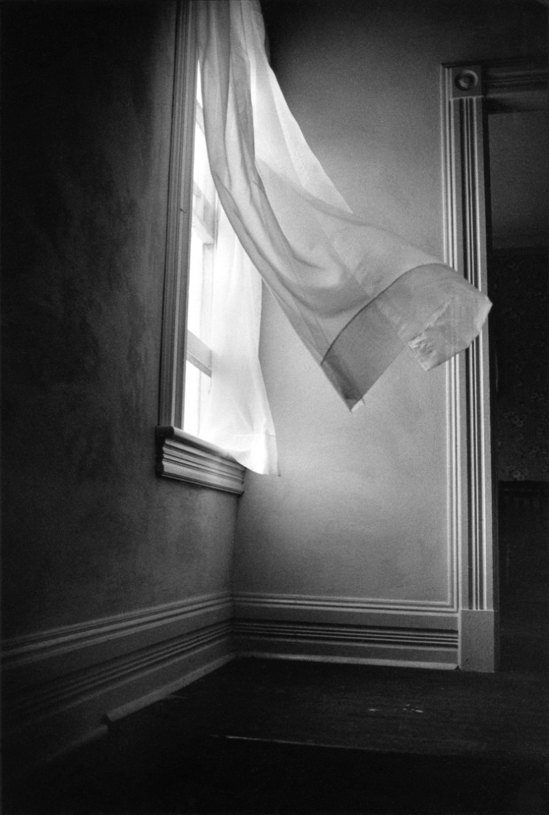 Harold Feinstein - Breezy Curtains