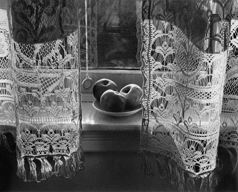 Harold Feinstein - My mothers curtains