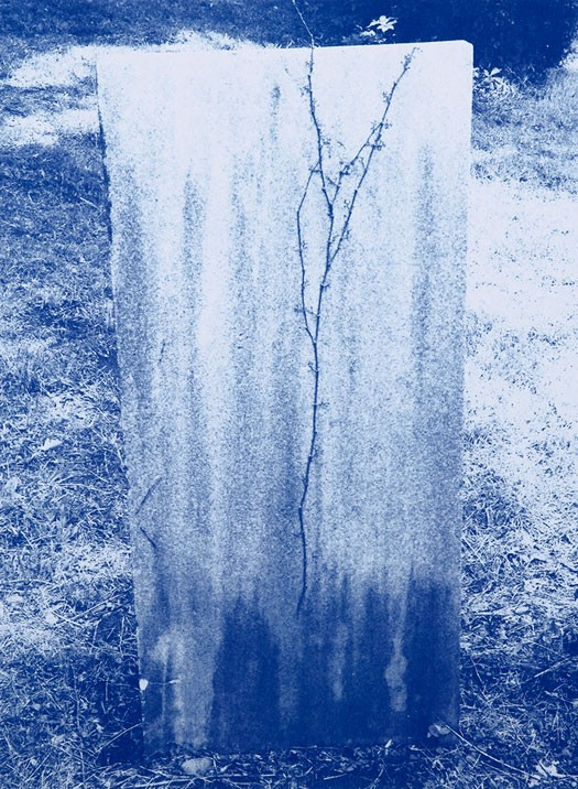 TIM_BARBER_BLANK_GRAVE_LOW-525x716