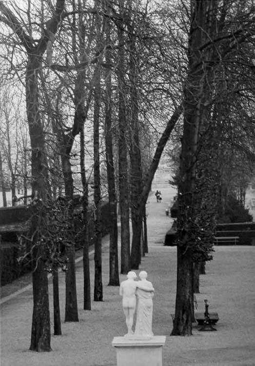 Edouard Boubat, Parc de Saint-Cloud, 1981