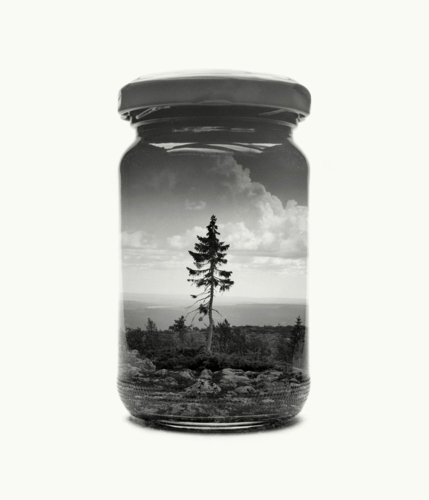 03-jarred-christoffer-relander